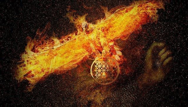phoenix-3424275_640 (1)